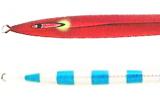 魚矢WB展示会カラー レッドブルエッジグロー
