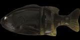#S-400 ブラックパンプキン