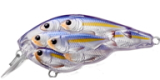812 Pearl/Violet Shad